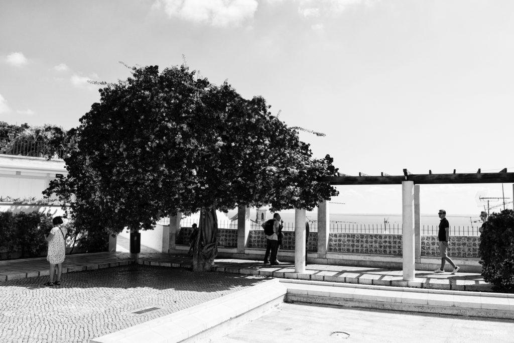 JBADIE_Portugal_72